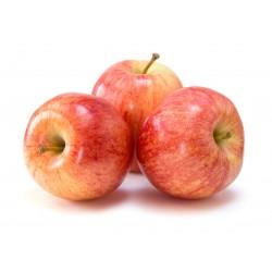 Pomme reine des reinettes