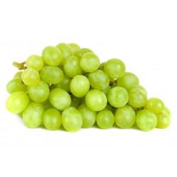 Raisin blanc Italie