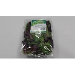 Salade Mesclun 125gr