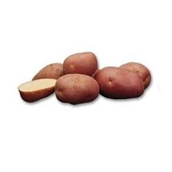Pomme de terre 2.5 Kg Cherie
