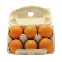 6 œufs plein air