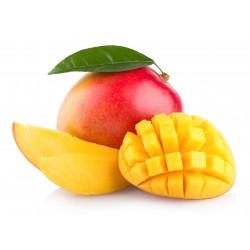 Mangue bio